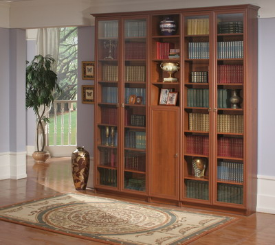 Стеклянные дверцы книжного шкафа - идеальный вариант