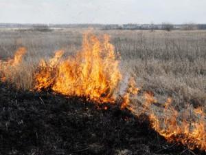 Возгорание сухой травы.