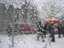 На Дону - мокрый снег.