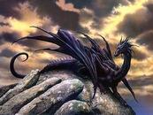 Черный Водяной Дракон.