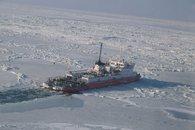 Летом в Азовском море — холера, зимой — почти арктические льды.