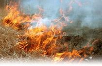 Сжигание сухой травы.