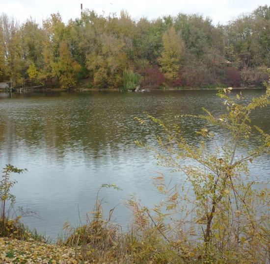 Озеро под Янтарным.