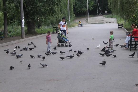 Главное авеню в ДУБКАХ.