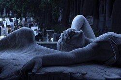 Одним кладбищем в Ростове станет больше.
