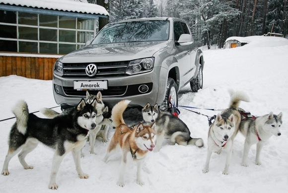 Подходящий транспорт для ростовской зимы.