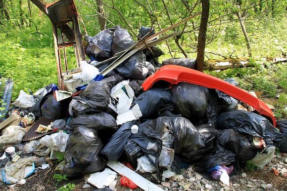 По растущим горам мусора в соседствующей с «Манхэттеном» роще можно отследить, что окрестности аэропорта успешно заселяются, цивилизация приходит.