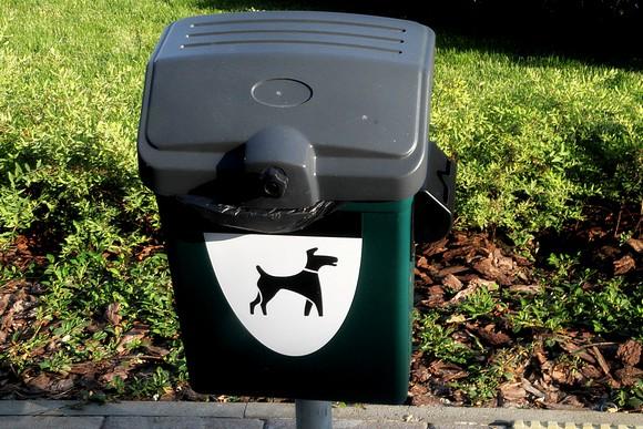 Простаивающая без дела «евроурна» для собачьих нечистот. Это, наверное, тоже с непривычки.