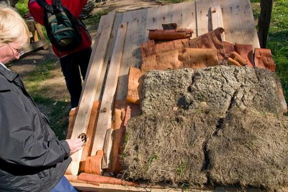 Любители зеленых крыш делятся опытом на специальных семинарах.