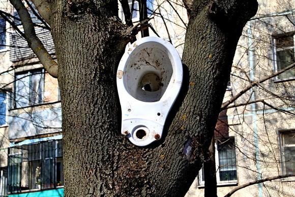 Дом по пр. Стачки. Из-за высокого тарифа ростовчане складируют мусор даже на деревьях?!