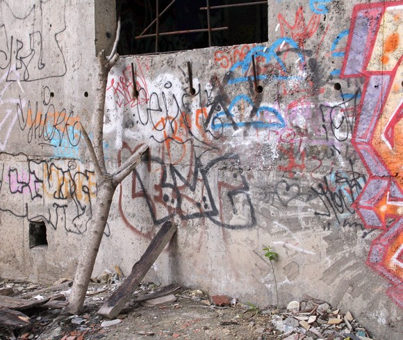 А эти «дровишки», прислоненные к стене с окном, явно служат кому-то лестницей. Ступив на доску и далее на сломанное деревце, окажешься на подоконнике и пролезешь в здание сквозь проржавевшую решетку.