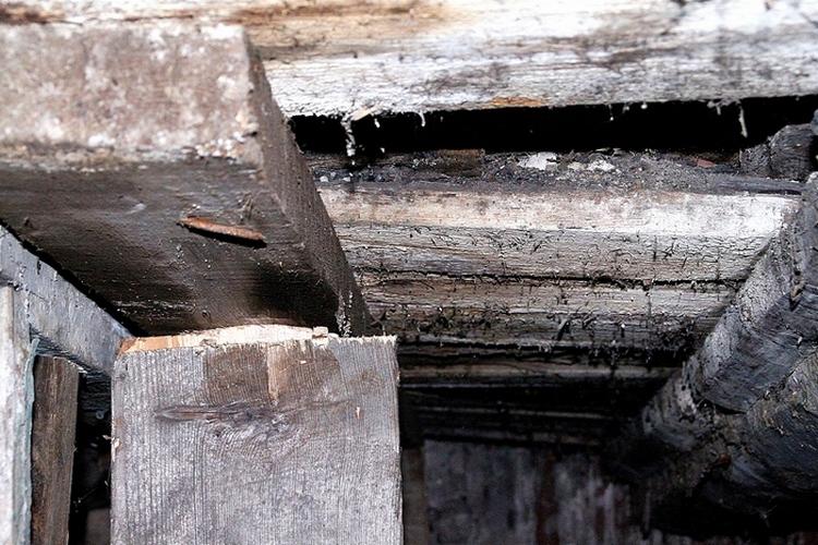 Причина налицо: деревянные межэтажные перекрытия в доме сгнили. В таком состоянии пребывает потолок подвала, он же — пол квартиры на первом этаже.